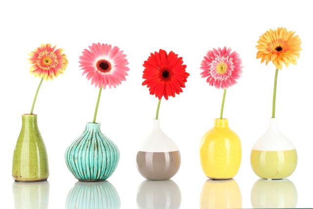 Malerei Horvath - Fototapeten Motiv Blumen Nr. 47