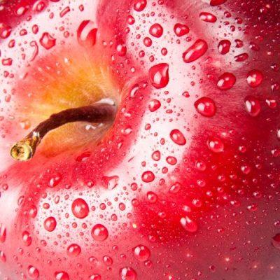 Malerei Horvath - Fototapeten Motiv Essen und Trinken Nr. 4
