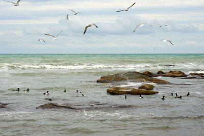 Malerei Horvath Fototapete Meer & Wasser 82