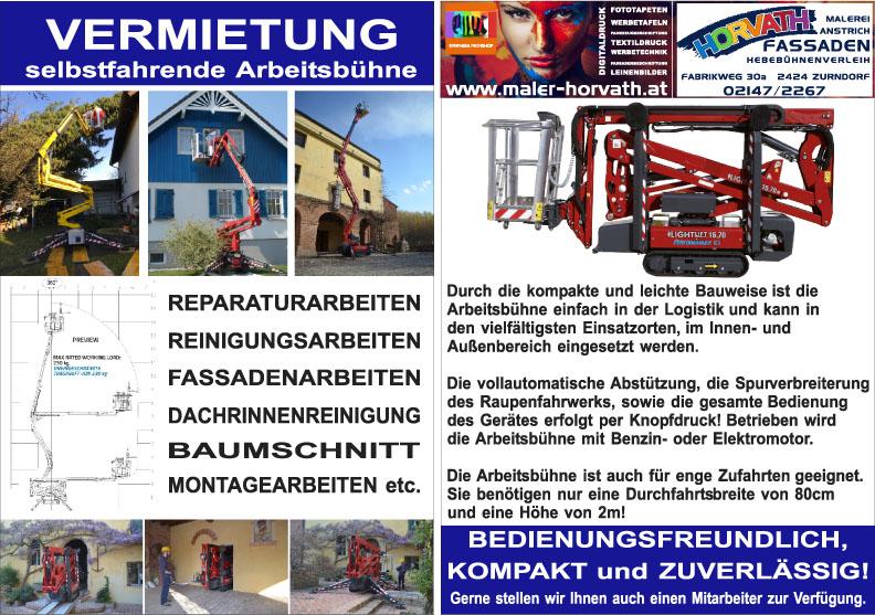 Monitore mit neuer Homepage Malerei Horvath